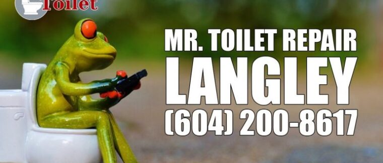 Mr-Toilet-Repair-Langley